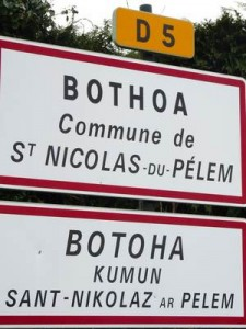 bothoa1